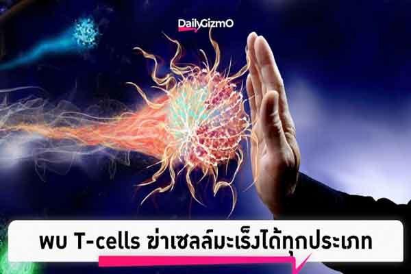 ความรู้เรื่องมะเร็ง