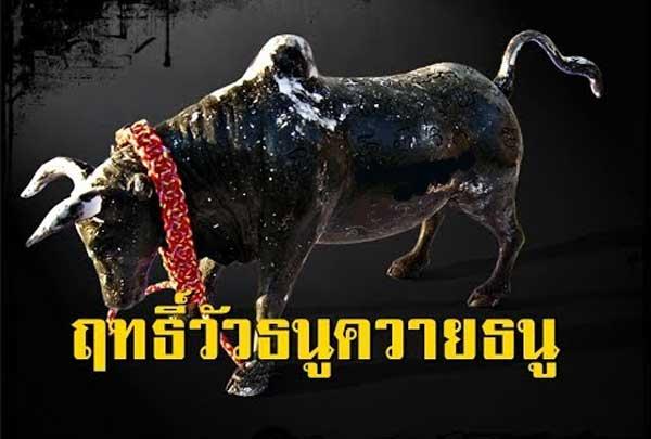 วัวธนูควายธนู
